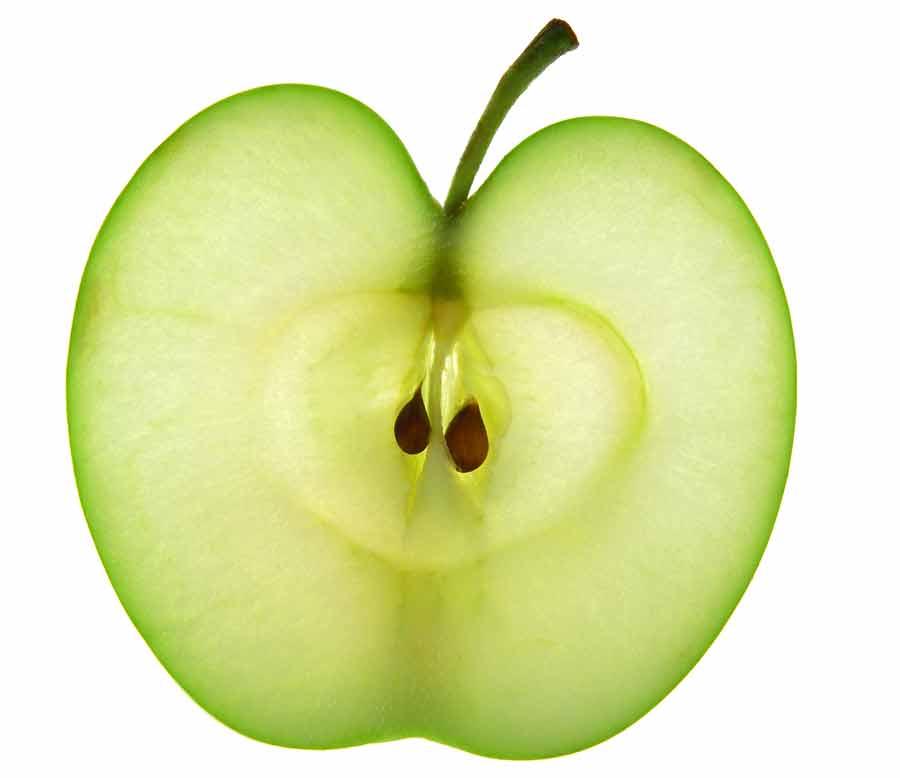 przekrój jabła